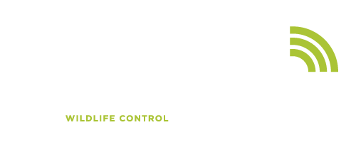 TrapandTrack